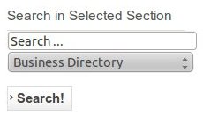 search-in-selected-section